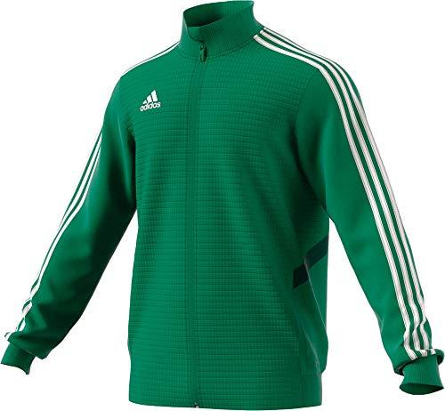 adidas TIRO19 TR JKT Sport Jacket, Hombre, Bold Green/Collegiate Green/White, LT2