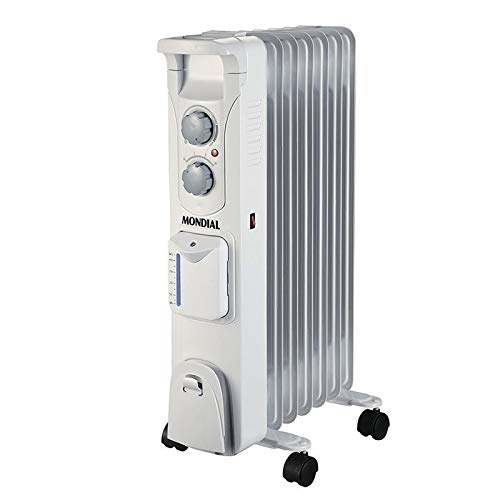 Mondial A14 radiator.