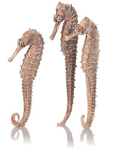 Oase biOrb Seepferdchen 3er-Set - 3-teilige Aquariums-Dekoration, Accessoires in Form von DREI Deko-Tieren, Zubehör fürs Aquarium-Becken, in Natur