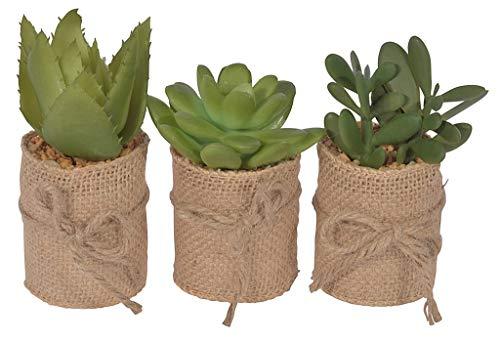 Chiccie 3 Set vetplanten in jute pot 12cm - kunstplanten kunstbloemen vetplant