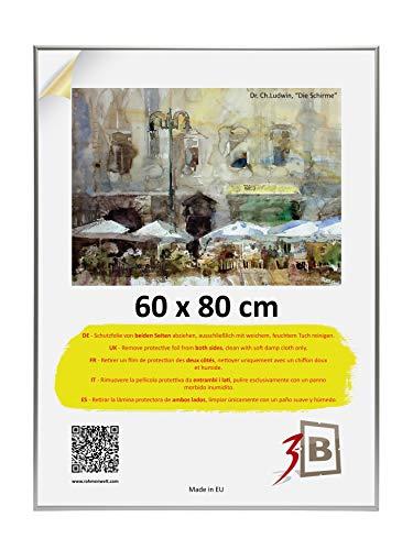 3-B Alu Poster Brushed - Großer Bilderrahmen - mit Polyesterglas und Schutzverpackung - Silber matt - 60x80 cm