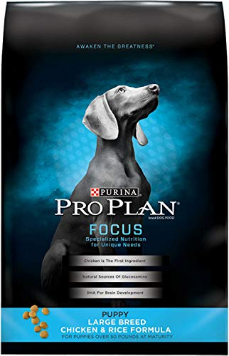 Purina Pro Plan FOCUS Puppy Large Breed Chicken & Rice Formula Dry Dog