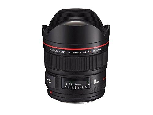 Canon Objektiv EF 14mm F2.8L USM II Ultra Weitwinkel für EOS (Festbrennweite, Filterhalter, Autofokus) schwarz