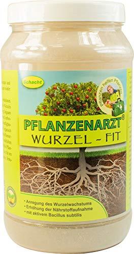 PFLANZENARZT® Wurzel-Fit Wurzelaktivator, Organisch-mineralischer NP-Dünger mit Eisen und Kalk, 2,25kg