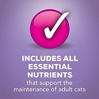شراء Purina Friskies Shreds Wet Cat Food - (24) 5.5 oz. Cans
