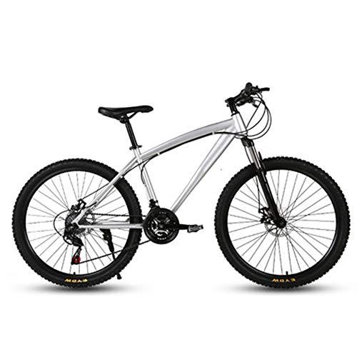 D&XQX Fahrräder Adult Mountainbike, Rennrad Reise Sommer im Freien Fahrradstudentenfahrraddoppelscheibenbremse Shock Geschwindigkeit einstellbar Fahrrad für Männer und Frauen,21 Speed