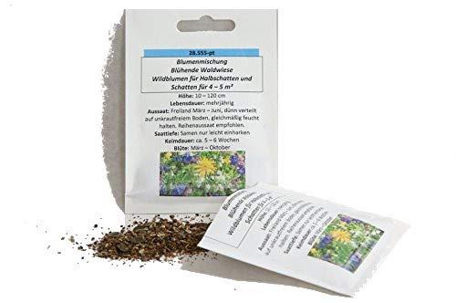 """4-5 m² für Halbschatten und Schatten Wildblumen-Mischung""""Blühende Waldwiese"""" Blumenmischung Blumensamen"""