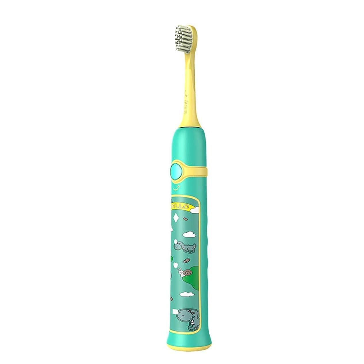 かすれた証拠十一超音波電動歯ブラシ成人5速誘導充電歯ブラシ