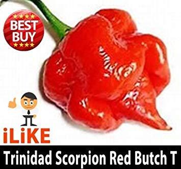 vegherb Trinidad Scorpion Butch T 10 Samen Minimum. Einer der Weltheißeste