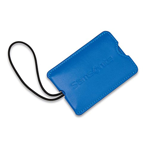 Samsonite Vinyl 2-Pack Rectangle Luggage ID Tags, Blue Fantasy, One Size