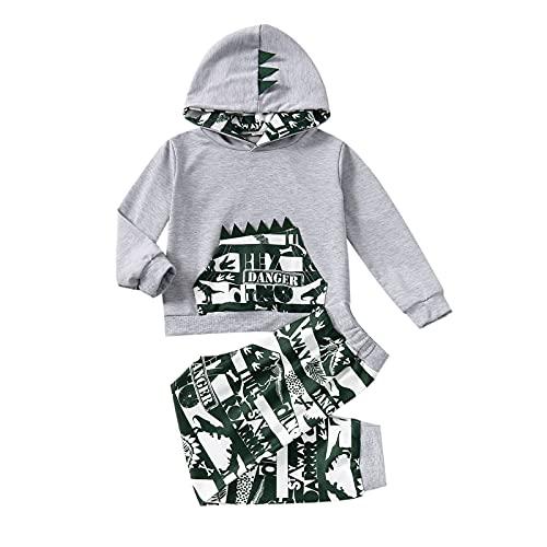 Alunsito Ropa para bebés y niños pequeños Sudadera con capucha estampada de manga larga con bolsillo + pantalón de dinosaurio Conjunto de 2 piezas Gris 90 18-24 meses