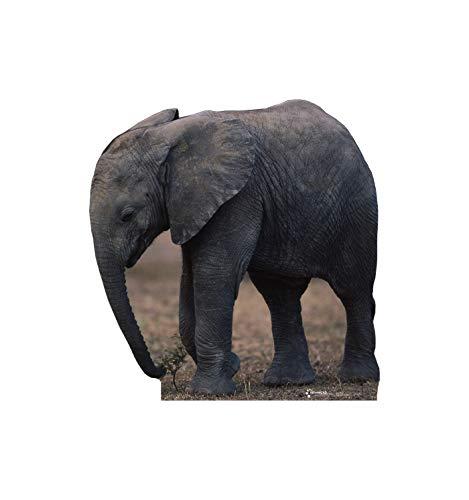 Advanced Graphics Elephant Life Size Cardboard Cutout Standup