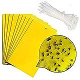 ANBET 25PCS Trampas para Moscas Adhesivas Amarillas Pegatinas de Papel para Moscas Atrapasueños para atrapar Insectos Tablero Adhesivo (6x8 Pulgadas, Correas de Nylon Incluidas)