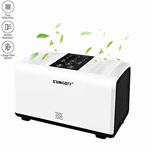 2. SUMGOTT Purifier - Un limpiador de aire a tu ritmo
