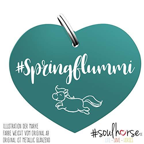 Soulhorse Springflummi türkis Kleiner Glücksbringer Marke Anhänger für Pferdezubehör Halfter Trense Zaumzeug Sattel Vorderzeug