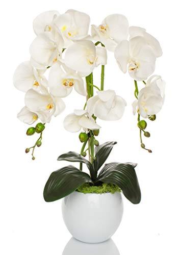 First Orchideen Gesteck künstlich Weiß Keramik Übertopf Kunstblumen Kunstpflanze im Übertopf aus Keramik | Gesamthöhe: 60cm | EU Handarbeit |
