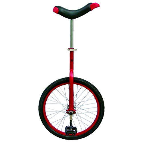Fun 20 Inch Wheel Unicycle with Alloy Rim, Red