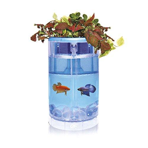 Ocean Gratuit Betta Flora d'aquarium Culture hydroponique Siamois Fighter Plant LED Nano Cube