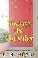Promise Me November: a novel (Twelve Months, Twelve Love Stories)