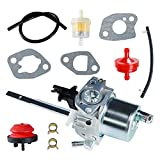 Henkeyi Carburetor Carb for Ariens 20001368 20001027 20001086 20001369 Snow Blowers McCulloh...