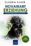Hovawart Erziehung: Hundeerziehung für Deinen Hovawart Welpen