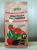 Green Ravenna Insetticida del Terreno DIREX clorpirifos 5% Contro Larve e Insetti terricoli 1 kg
