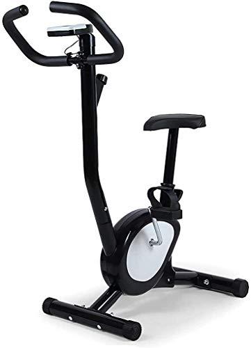 PARTAS Erweiterte Indoor Heimtrainer Fahrrad Spin Bike Ultra-Quiet Fitness-Bike und Bauchtrainer, Home Gym Cardio Trainer Heimtrainer Spinning Fahrrad Fitness Sportausrüstung
