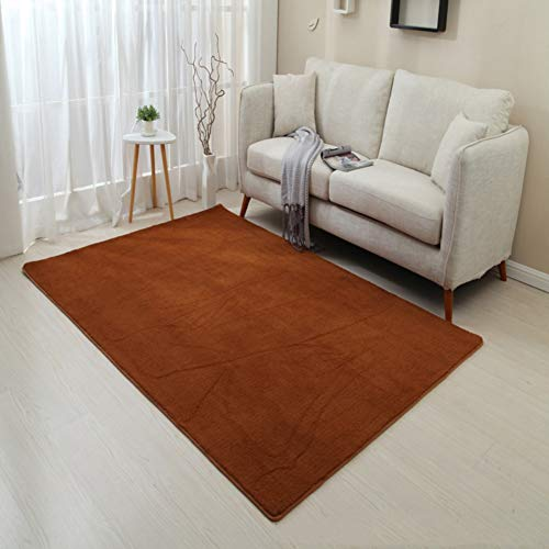 Save %23 Now! PP&DD Solid Color Carp Rectangle,Baby Carpet,Soft Rugs,Nordic Anti-Skid Carpet,Easy to...