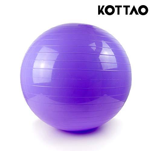 Natural Logistics Fitball.Pelota de Yoga