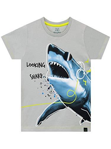 Harry Bear Boys' Shark T-Shirt