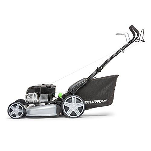 Murray 2691476