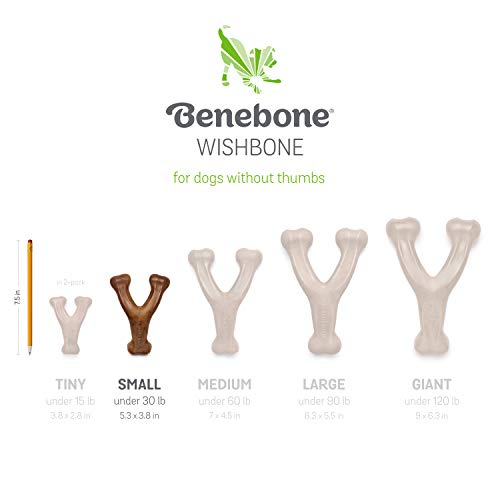 Product Image 6: Benebone Durable Wishbone Dog Chew Toy for Aggressive Chewers, Real Bacon. Made in the USA.