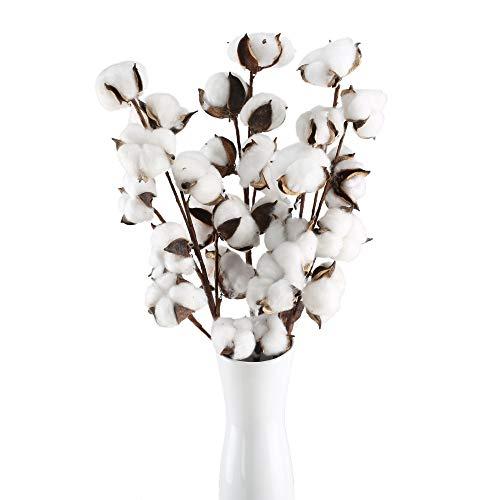 HUAESIN 3Pcs Ramo de Flores Secas Naturales Blanca Rama Algodon Artificial Flores Artificiales Blancas Decoracion para Jarrones Hogar Bodas Fiestas Mesa Cocina Escritorio Restaurante 53cm