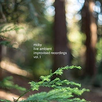 Live Ambient Improvised Recordings, Vol. 1