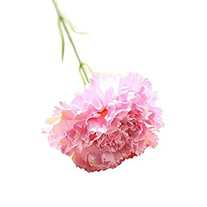 Togethor Silk Carnations, Artificial Fake Flower for Bouquets, Weddings, Cemetery, Crafts & Wreaths, Party Home Decor