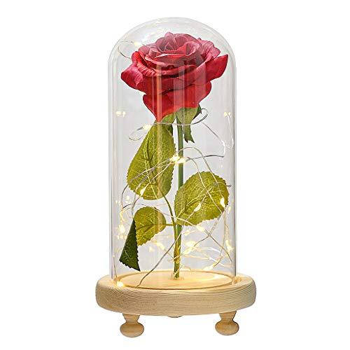 Amuzocity LED Light Enchanted Flower Valentine's Day Gift