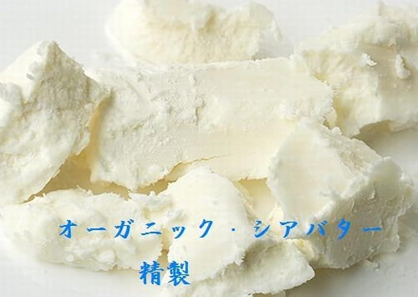 約設定スケルトン男らしさシア バター 精製 オーガニック 100g 送料込み