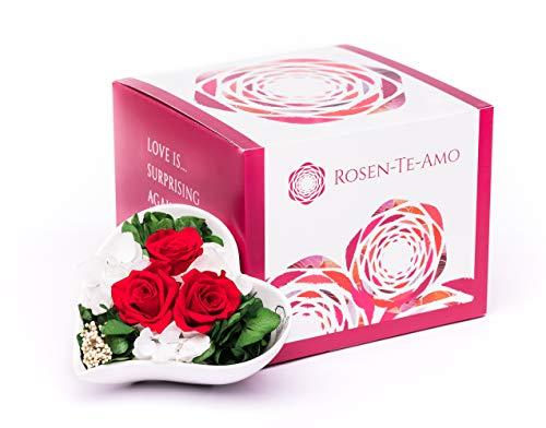 Rosen-Te-Amo Blumenstrauß Liebe - duftende konservierte ewige Rosen in Vase handgefertigt mit echtem Bindegrün in feiner Geschenk-Box. Infinity Rosen: Geschenke für Frauen & Deko Wohn-Zimmer