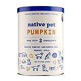 Native Pet Pumpkin For Dogs