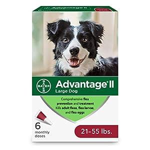 Advantage II 6-Dose Large Dog Flea Prevention, Topical Flea Treatment for Large Dogs 21-55 Pounds