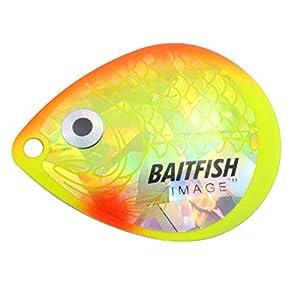 Northland Tackle HCDC5-DP Baitfish-Image Blades #5 3/Bag Bait, Dace