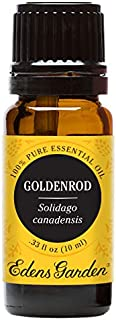 Edens Garden Goldenrod Essential Oil, 100% Pure Therapeutic Grade (Highest Quality Aromatherapy Oils- Massage & Skin Care), 10 ml