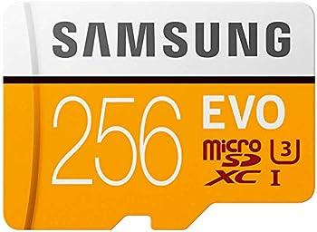Samsung EVO 256GB microSDXC Card
