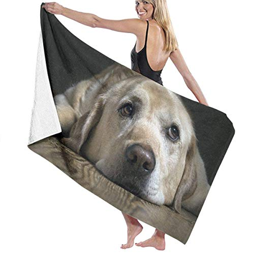 fjfjfdjk Labrador Dog Adult Microfiber Beach Towel Oversized 31x51 inch Quick Dry Eco-Friendly Multipurpose Use Pool Towel for Women Men