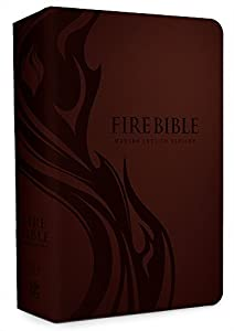 Spirit Filled Life Study Bible Vs Fire Bible - A Comparison Review 5