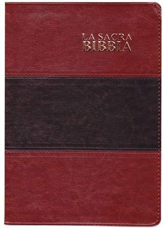 La Sacra Bibbia Nuova Diodati a caratteri grandi (171.244)
