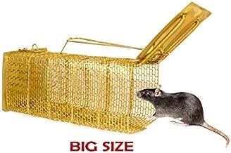 Astro Hub Rat Trap Cage, Standard, Golden