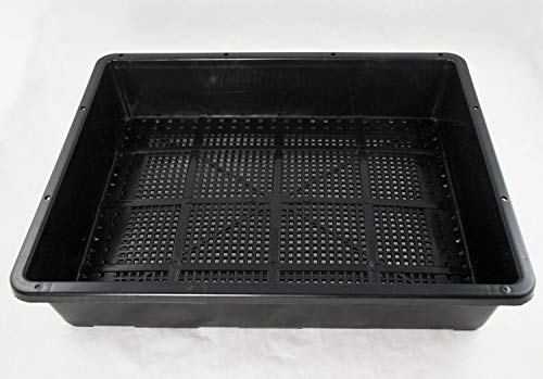 Black Plastic Tray for Propagation, Bonsai Forest / Group Planting 15'x 12'x 3' #TKB10