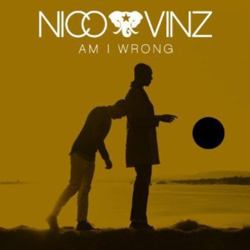 Am I Wrong [Import Allemand]