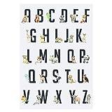 Tainsi Kinderzimmer Poster Baby Bilder (ABC Lernposter Tiere Alphabet) 12x18inches,30x46cm